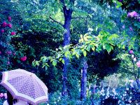 花傘散歩 アイコン画像2