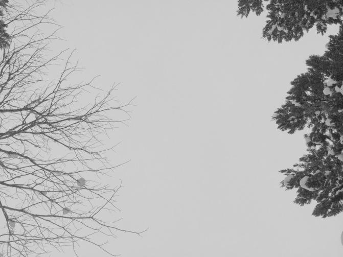 24 IMG_1481 '15 石内丸山